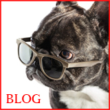 楽天店長のブログ